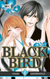 Black Bird Band 2