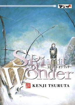 Spirit of Wonder Band 2